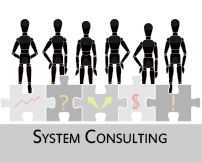 System Engineering Consulting
